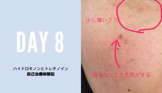 ハイドロキノンとトレチノイン自己治療の経過ブログ8日目の写真